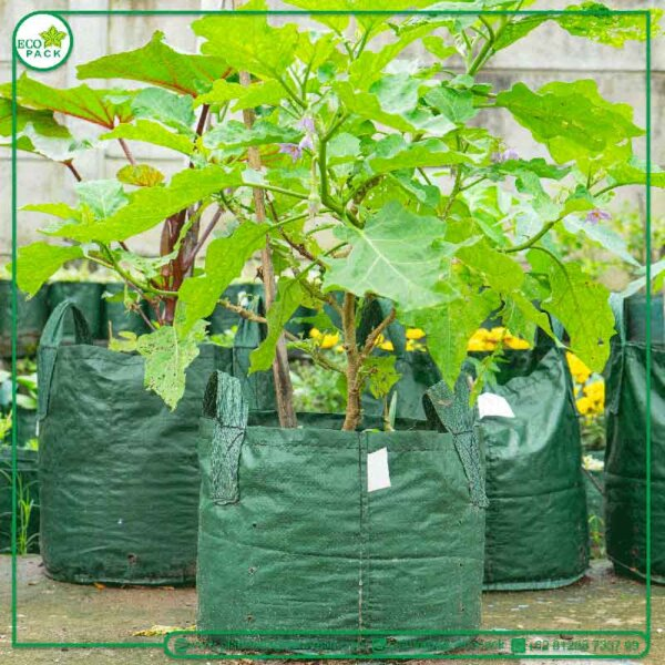 planter-bag