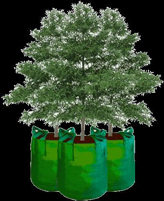 planter-bag-produk.png